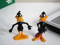 2 x Daffy