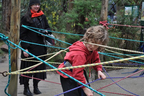 rope maze 3712