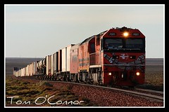 5AD1 (Tom O'Connor.) Tags: train canon lens eos diesel nt south twin rail australia alf darwin trains class kit sa wyoming northern railways freight genesee territory fq pimba freightliners 5ad1 1000d railsa alf23 fq1