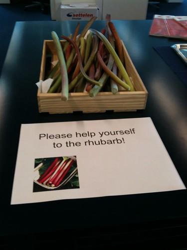 20090701 - Free Rhubarb