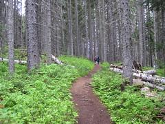 July 2010 022 (Hike Chilliwack) Tags: club lightning manningpark hikinghiking chilliwackbc trailshiking lakeshike