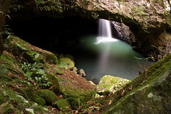 Natural Bridge (Thiru Murugan) Tags: nature water beautiful forest flow waterfall rainforest awesome australia naturalbridge slowshutter queensland goldcoast waterflow springbrook southeastqueensland springbrooknationalpark