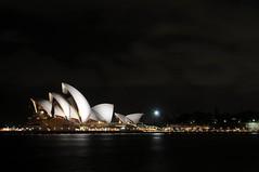 Sydney by night