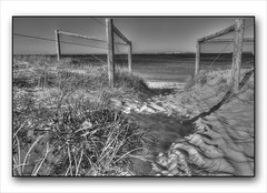 Ramp to Brighton-le-Sands Beach (Mariasme) Tags: beach monochrome fence brightonlesands 2216