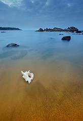 (Slavin@) Tags: longexposure sea sky seascape beach nature landscape day cloudy shell explore bulgaria send blacksea sinemorets anawesomeshot theunforgettablepictures gettyimagesartistpicks