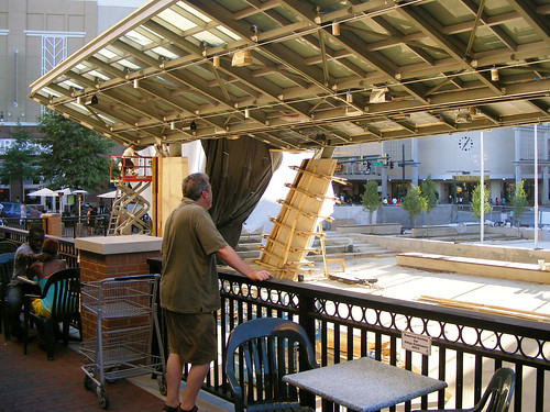 Admiring The Canopy, July 2010