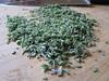 chopped lavender