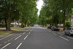 _IGP1302 (fotddarren) Tags: road uk trees de bedford photography flickr beds ave parys fotddarren pentaxk200d