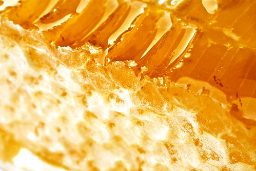 Honey Cone 1 by Waleed Alzuhair, on Flickr