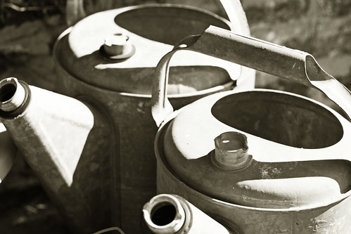watering cans bw jo