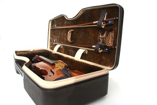 Calder series 1.0 violin case