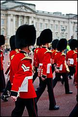 British Royal Guards (Isedo) Tags: uk greatbritain london britain britishsoldiers princecarl britishroyalguard