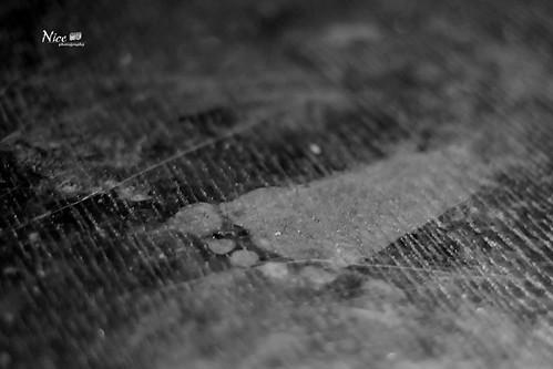 Moo Footprint