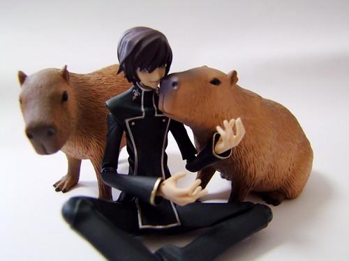 カピとルル山さん/Capybara and  Lelouch