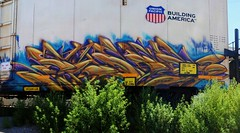 Paser MFK (208 Bench) Tags: art train graffiti graff freight laws mfk armn paser
