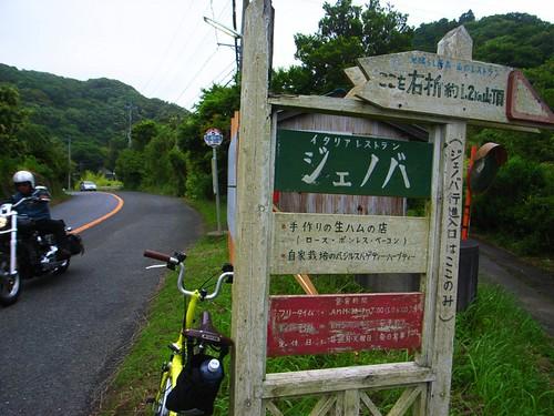 R0028511_20100620