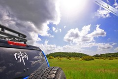 N.O.T.W. (Chrissy Avila Photography (cHrIsSy1554)) Tags: flowers trees sky flower tree nature beautiful clouds landscape photography natural offroad 4x4 florida wildlife toyota backcountry floridawildlife fjcrusier southfloridawildlife offroadfun john1836 okaloacoocheesloughstateforest ©csquaredphotography chrissy1554 ©christinaavilaphotography ©chrissyavilaphotography wwwchrissyavilaphotographycom
