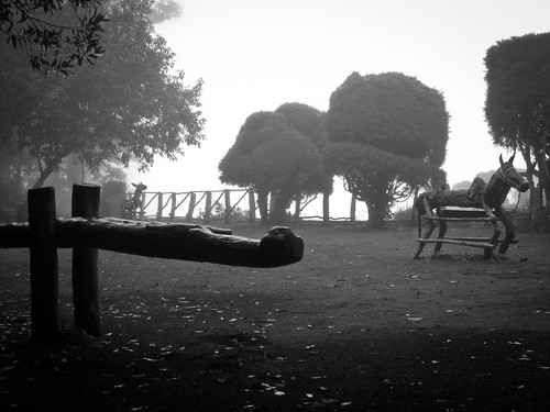Los Volcanos NP 04 - Playground in the thick fog