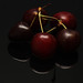 Day 001 of 365: Black Cherry