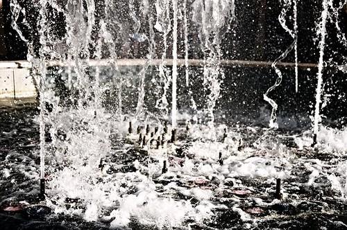 Revuelta acuática