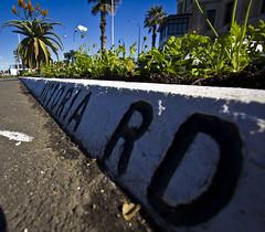 Street View (eightythreephoto) Tags: sky black green canon scott gray rory auckland nz photowalk devonport 2010 kelby 550d t2i