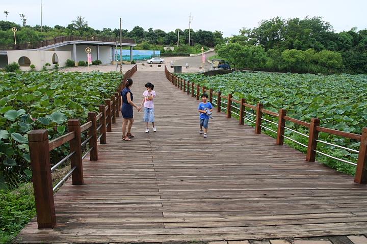 台南白河蓮花公園(水連公園)0008