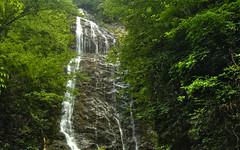 Mingo Falls 31July2010