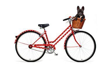 gorman_bike