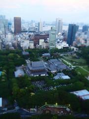 Tokyo 2010 - 芝公園 - 東京タワー(8)