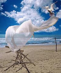 summer wind (leowincy) Tags: digitalcameraclub mywinners platinumphoto colorphotoaward isawyoufirst flickrdiamond theunforgettablepictures bestcapturesaoi magicunicornverybest magicunicornmasterpiece elitegalleryaoi mygearandmepremium marzo2016challengewinnercontest