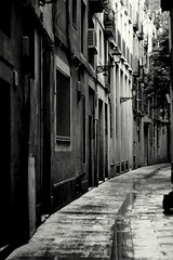 Diagon Alley (Frau Bb (buuusyyyy)) Tags: barcelona door city houses windows bw wet puddle 50mm spain alley doors fenster harry potter lane stadt canoneos350d tr spanien tren gasse huser nass pftze schwarzweis