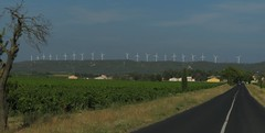 Line of windmills (shaggy359) Tags: road france tree field vineyard vines village hill vine windmills line aude turbine turbines winmill ornaisons