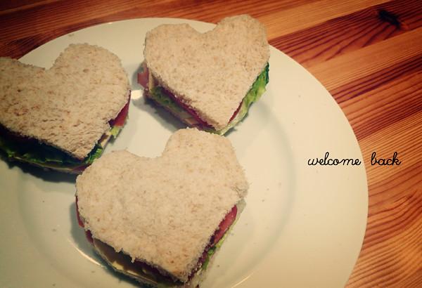 sandwich01