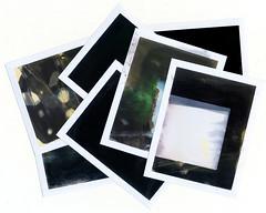 polaroid_all (alexei_zharinov) Tags: summer 6x6 polaroid expired antiphoto 314x414 bronicasqai fujifp100csilk