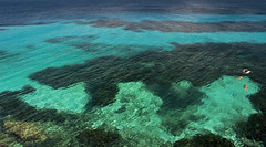 United colors of sea (iana) Tags: blue summer verde green water azul ma estate blu si non ci acqua sono favignana turchese meduse smeraldo isoleegadi vedono caladelbuemarino