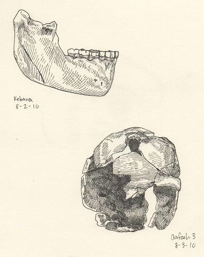 kebara-mandible-qafzeh-3-2010