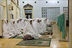 Ramadan - Yogyakarta (Roy Del Vecchio) Tags: indonesia java women asia muslim islam faith prayer pray praying hijab mosque yogyakarta ramadan puasa khimar