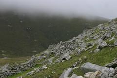 St Kilda Mist
