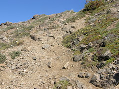 Looking up loose dirt/scree trail up Buckhorn.