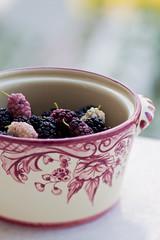 mulberries (ion-bogdan dumitrescu) Tags: summer fruits childhood fruit child sunny bowl fresh dude ruby ripe mulberry mulberries dud bitzi morusalba morusnigra ibdp mg4440 ibdpro wwwibdpro ionbogdandumitrescuphotography