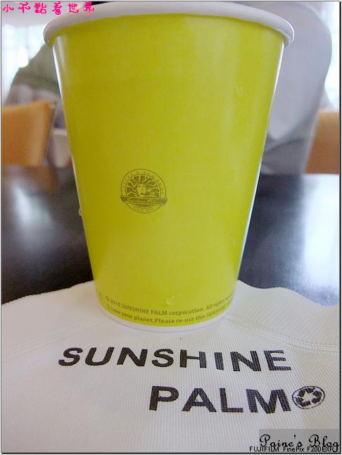 斗六陽光棕櫚