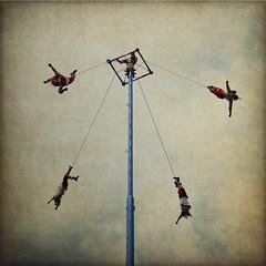 Cuatro en el cielo (Rafa Barajas) Tags: textura mexico cielo cultura folklor tradicion voladores ltytr2 ltytr1 ltytr3 ltytr4 ltytr5