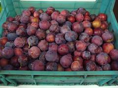 Caissette de prunes