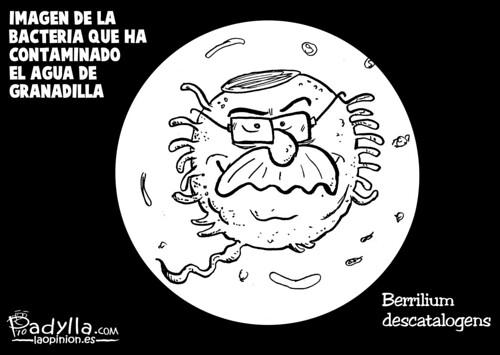 Padylla_2010_08_10_La bacteria de Granadilla