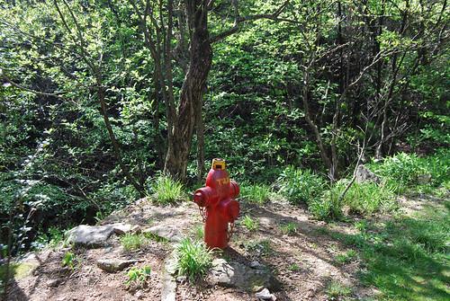 l30 - Trail Hydrant