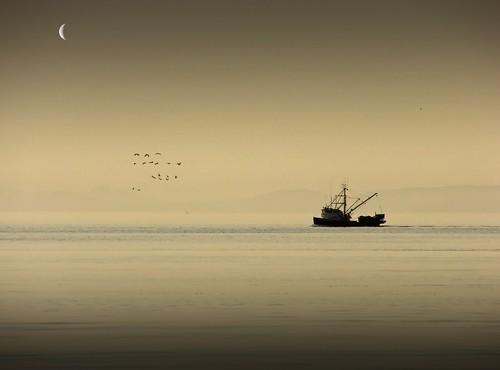 """ Ferry me across the water, Do, boatman, do."""