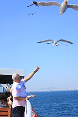 your life with my hands (Ozlem Kaya) Tags: old city blue sea sky people man bird smile smiling animal canon turkey bread island eos fly flying looking seagull trkiye wing istanbul steamboat marmara 500d adalar
