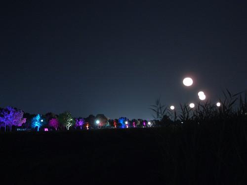 平城宮跡夏季フェア「光と灯りのフェア」-27
