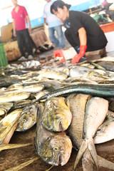 東台灣魚貨量最大的成功漁港