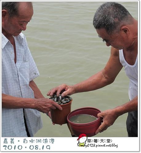 白水湖漁港109-2010.08.19